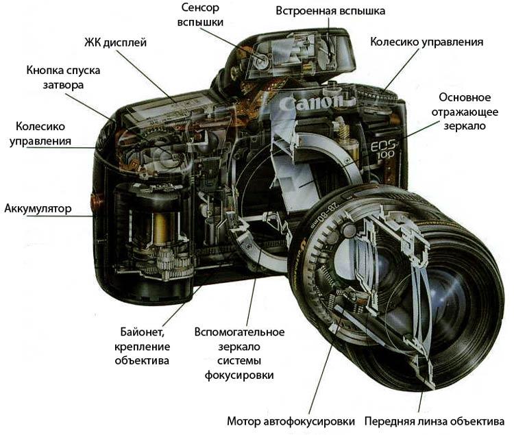 зеркальный фотоаппарат изнутри устройство допустить инфицирование