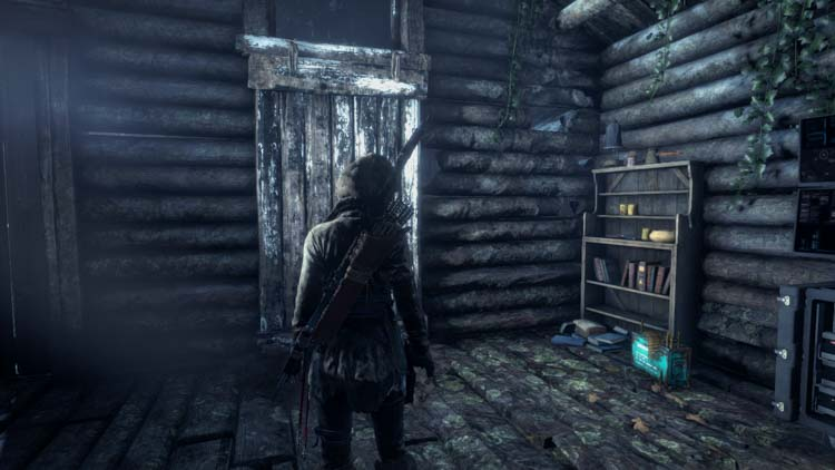 скриншот 14 из rise of the tomb raider